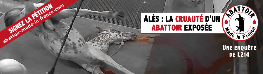 2015-10-13-abattoir-made-in-france-carrousel
